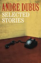 Selected Stories (ebook)