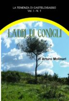 Ladri di conigli (ebook)