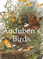 Audubon's Birds (ebook)