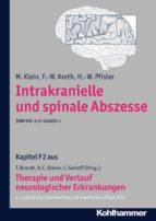 Intrakranielle und spinale Abszesse (ebook)