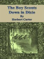 The Boy Scouts Down in Dixie  (ebook)