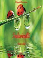 Il piccolo libro degli indovinelli (ebook)