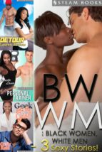 BWWM: Black Women, White Men - A Sexy Bundle of 3 Interracial Erotic Stories from Steam Books (ebook)