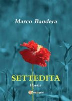 Settedita (ebook)