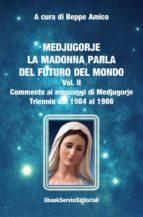 Medjugorje - La Madonna parla del futuro del mondo - Commento ai messaggi di Medjugorje - Triennio dal 1984 al 1986 (ebook)