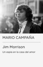 Jim Morrison. Un espía en la casa del amor (ebook)