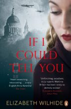 If I Could Tell You (ebook)