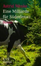 Eine Milliarde für Süderlenau (ebook)