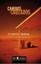 Caminos cruzados (ebook)