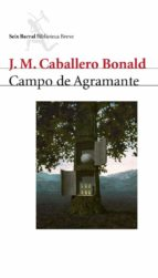 Campo de Agramante (ebook)