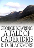 George Bowring: A Tale of Cader Idris (ebook)