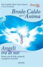 Brodo caldo per l'anima. Angeli tra di noi (ebook)
