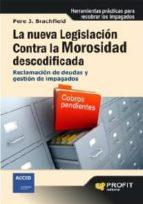 La nueva legislación contra la morosidad descodificada (ebook)