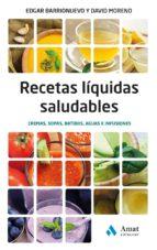 Recetas liquidas saludables (ebook)