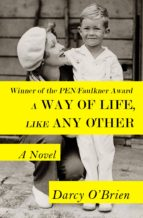 A Way of Life, Like Any Other  (ebook)
