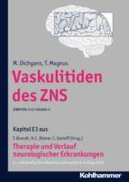 Vaskulitiden des ZNS (ebook)