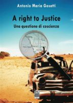 A right to justice (ebook)