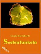 Seelenfunkeln (ebook)