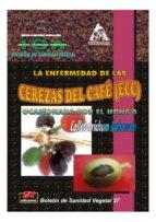 Enfermedad de las cerezas del café (CBD) ocasionada por el hongo Colletotrichum kahawae, La