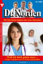 Dr. Norden 1080 - Arztroman (ebook)