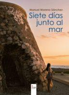 Siete días junto al mar (ebook)