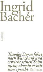 Theodor Storm fährt nach Würzburg und erreicht seinen Sohn nicht, obwohl er mit ihm spricht (ebook)