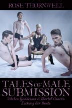 Tales of Males Submission (ebook)