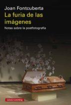 La furia de las imágenes (ebook)