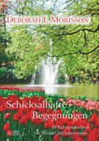Schicksalhafte Begegnungen - 20 Kurzgeschichten im Wandel der Jahreszeiten (ebook)