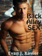Back Alley Sex (ebook)