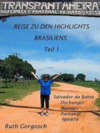 Reise zu den Highlights Brasiliens Teil 1 (ebook)