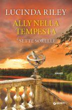 Ally nella tempesta (ebook)