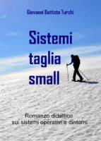 Sistemi taglia small (ebook)