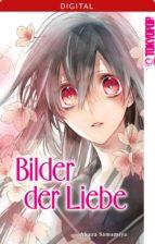 Bilder der Liebe (ebook)