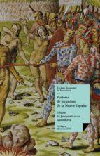 Historia de los indios de la Nueva España (ebook)