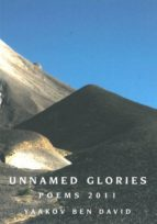 Unnamed Glories (ebook)