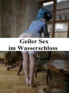 Geiler Sex im Wasserschloss (ebook)