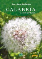 Calabria i colori del bosco  (ebook)