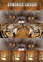 La notte tutti i gatti sono bigi  (ebook)