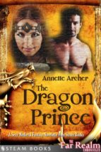 The Dragon Prince - A Sexy Medieval Fantasy Novelette from Steam Books (ebook)