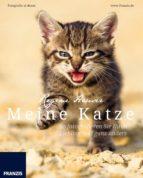 Meine Katze (ebook)