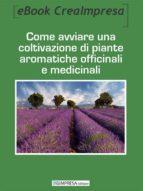 Come avviare una coltivazione di piante aromatiche, officinali e medicinali (ebook)