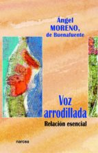 Voz arrodillada (ebook)
