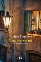 Una veu de nit (ebook)