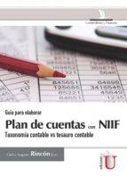 Guía para elaborar plan de cuentas con NIIF (ebook)