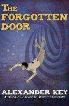 The Forgotten Door (ebook)
