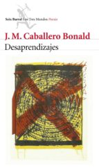 Desaprendizajes (ebook)