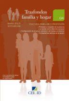 Cultura Familiar y Profesión (ebook)