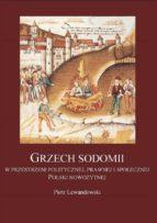 Grzech sodomii w przestrzeni politycznej, prawnej i społecznej Polski nowożytnej (ebook)