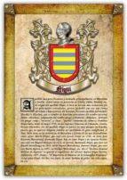 Apellido Niqui / Origen, Historia y Heráldica de los linajes y apellidos españoles e hispanoamericanos